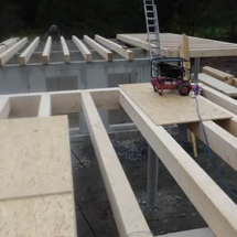 ingenierholzbauten30